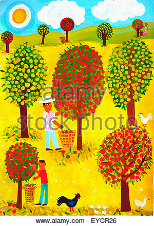Famille picking apples in orchard Banque D'Images