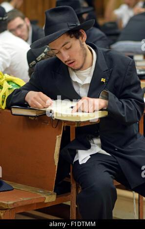 Un jeune homme juif religieux études dans une synagogue à Crown Heights, Brooklyn, New York City Banque D'Images