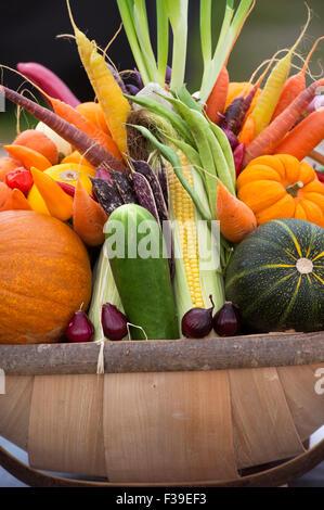 Trug légumes affiche à l'automne de Malvern, Worcestershire, Royaume-Uni Afficher Banque D'Images