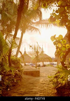 Lever du soleil sur la plage palapas à Maroma Resort et Spa. Riviera Maya, Mexique Yucatan,. Banque D'Images