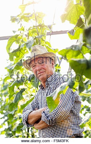 Senior man wearing hat entouré de plantes bras croisés looking at camera smiling Banque D'Images