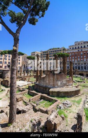 Vestiges romains dans le Largo di Torre Argentina, Rome, Italie Banque D'Images