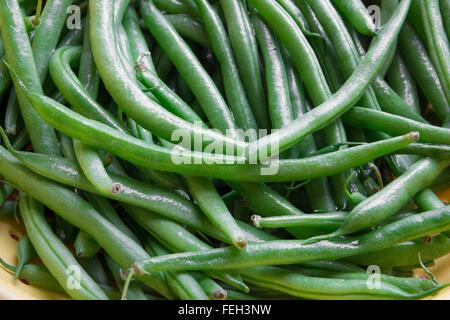 Haricots verts frais dans une passoire Banque D'Images