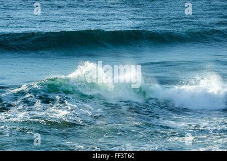 Dans l'onde d'écrasement à l'océan, chefs de Fingal Gold Coast Hinterland Banque D'Images