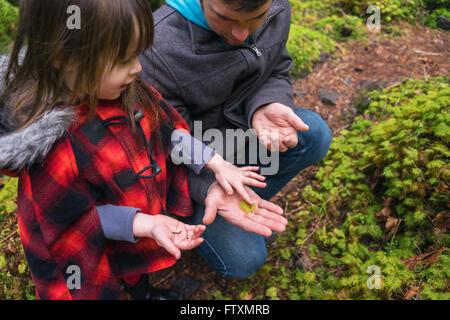 Jeune fille et un père à la forêt à feuilles de fougère à Banque D'Images