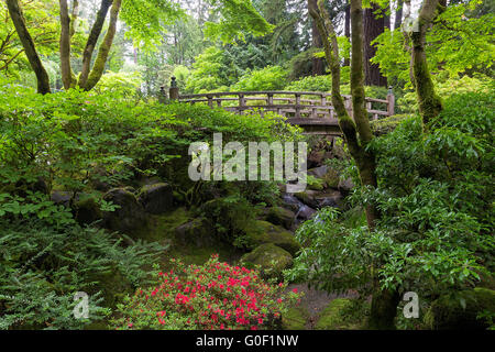 Pont sur la lune Creek au jardin japonais au printemps Banque D'Images