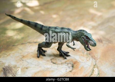 Tyrannosaurus toy debout sur rock Banque D'Images