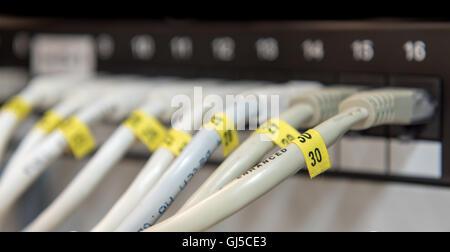 Câbles de données Ethernet de l'ordinateur connecté à une ligne sur un tableau de connexions de données pour fournir Banque D'Images