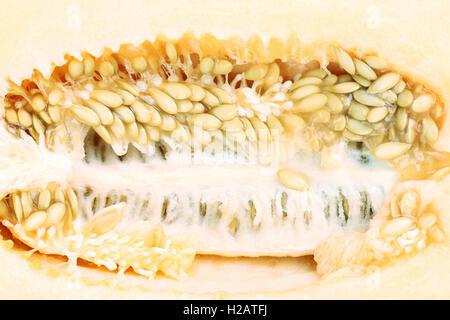 Close up d'un melon sur l'intérieur. Banque D'Images
