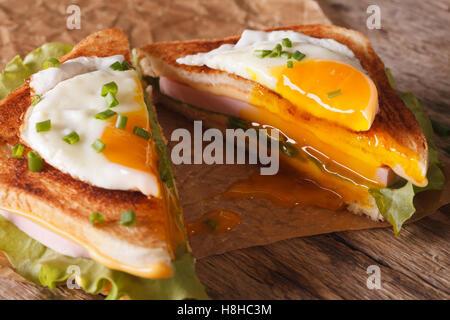 Les couper en deux avec un sandwich œuf frit, jambon et fromage sur le papier sur la table horizontale. Banque D'Images