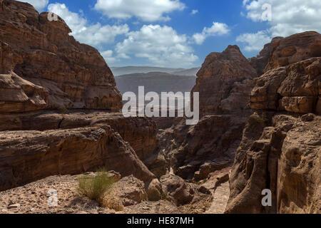 Belles Pierres et la nature à Petra, Jordanie Banque D'Images