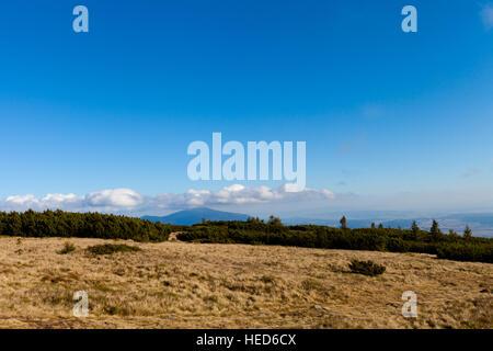 Beautiful autumn woods prises dans paysage de montagnes Beskides polonais, haut de Pilsko - Beskid Zywiecki. Babia Banque D'Images