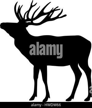Vector illustration of deer silhouette Banque D'Images