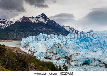 La glace bleu glacier Perito Moreno. La Patagonie. L'Argentine. Banque D'Images