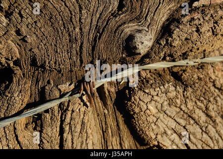 Un vieux poteau de clôture et patiné avec un fil barbelé fil attaché Banque D'Images