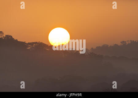 Le lever du soleil dans le Parc National de Soberania, République du Panama. Banque D'Images