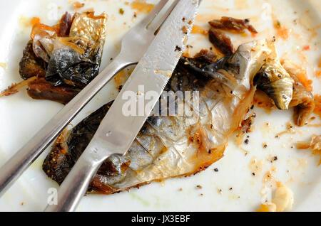 Le maquereau poisson skins on white plate Banque D'Images
