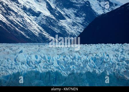 Face à la borne de Perito Moreno Glacier, Parque Nacional Los Glaciares (zone du patrimoine mondial), Patagonie, Banque D'Images
