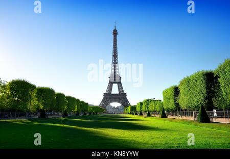 Vue sur la Tour Eiffel depuis le Champ de Mars à Paris, France. Banque D'Images