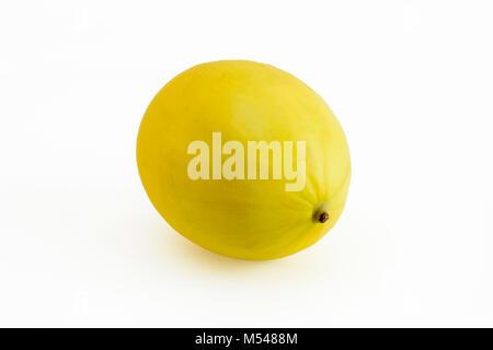 Seul melon miel doré sur fond blanc Banque D'Images