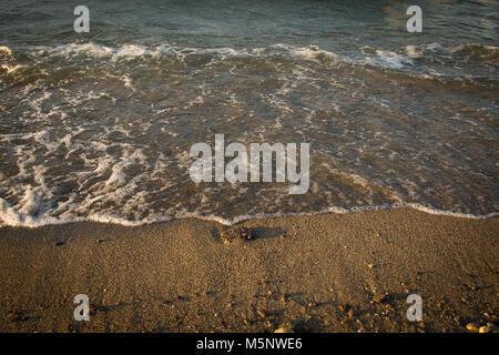Plage de sable de concassage vague sable brun Banque D'Images