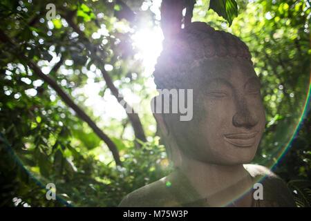 Sculpture Bouddha retour à la lumière du soleil à travers feuilles halo création de rideau Banque D'Images