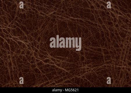 La texture de cuir brun élégant Perfective. Photo haute résolution. Banque D'Images