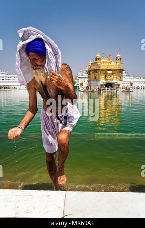 Amritsar, Punjab, India: Un vieil homme sikh sortant de l'Amrit Sarovar Harmandir Sahib à la piscine ou temple d'or tenant de l'eau sainte dans sa main un Banque D'Images