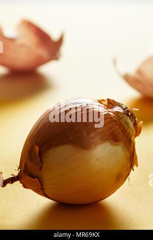 Avec l'Oignon Oignon avec rétroéclairage skins en bas sur la surface jaune. Concept de vie en bonne santé. Vertical image. Banque D'Images