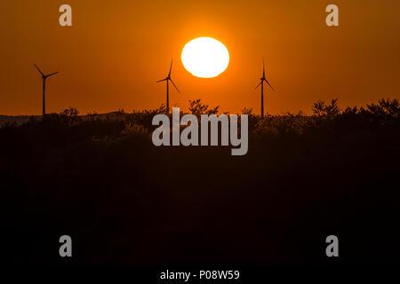 Silhouettes d'éoliennes au coucher du soleil, Mecklembourg-Poméranie-Occidentale, Allemagne Banque D'Images