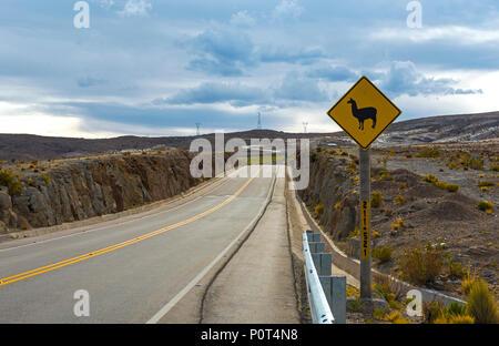 Lamas et alpagas sur le signe de route sur une autoroute à distance en Bolivie. Ces signes se trouvent dans la gamme de montagne des Andes de Bolivie, Équateur, Pérou, Chili. Banque D'Images