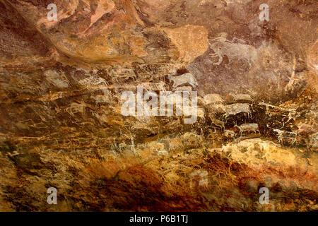 Peintures d'animaux sur le mur de grottes sont l'indication de talent artistique exprimée par les habitants des grottes primitives à Bhimbetka près de Bhopal dans le Madhya Prades Banque D'Images