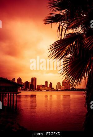 Magnifique coucher de soleil sur la baie de San Diego et de palmiers Banque D'Images