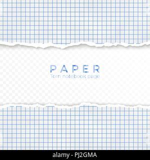 Bord déchiré du papier quadrillé bleu. Pas de morceau de papier quadrillé de portable. Page blanche isolé sur fond transparent. Vector illustration Banque D'Images