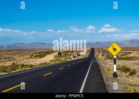 Llama crossing road sign au Pérou, Amérique du Sud Banque D'Images