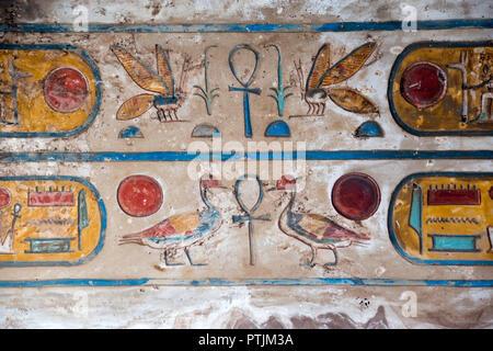 Bas-relief peint de couleurs vives d'hiéroglyphes: représentations de coléoptères, les canards et le soleil au Temple de Karnak, Louxor, Egypte. Banque D'Images