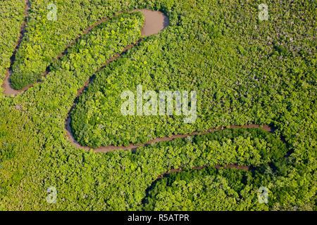 Vue aérienne de la forêt tropicale de Daintree, rivière, parc national de Daintree, Queensland Australie Banque D'Images