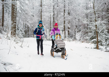 Maman avec poussette de bébé forêt profiter de l'hiver avec des ami ou partenaire, le temps de famille. La randonnée et l'exécution de femme avec la PRAM, luge d'équipe d'hiver Banque D'Images