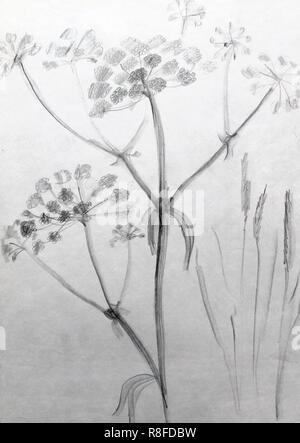 Noir Et Blanc Dessiner Une Ligne à Main Motif Floral Orné D