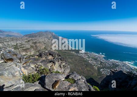 L'Afrique du sud, vue sur Camps Bay, Cape Town, Table Mountain Banque D'Images