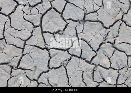 12.2005 sec dans la boue séchée, étang / stream causée par une sécheresse prolongée en raison de l'été, les températures extrêmes Banque D'Images