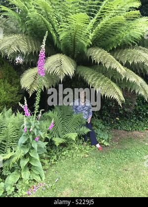 Dame femme assise sous palmier dans un jardin anglais avec des fleurs ossature la scène dans l'East Sussex rotherfield jardin Banque D'Images