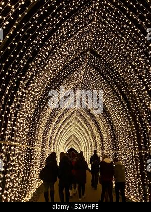 Cathédrale de lumières à Kew Gardens Kew à Noël 2018, illuminé trail, Londres, UK Banque D'Images