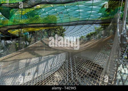Filets de ciel à l'aéroport Changi de Singapour, Jewel Banque D'Images