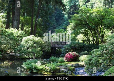 Une passerelle au-dessus d'un ruisseau, au jardin japonais de Portland de Portland, Oregon, USA. Banque D'Images