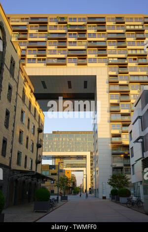 COLOGNE, Rhénanie du Nord-Westphalie, Allemagne - 17 juin 2019: maison de la grue, structure architecturale moderne dans le Rheinauhafen de Cologne. Banque D'Images
