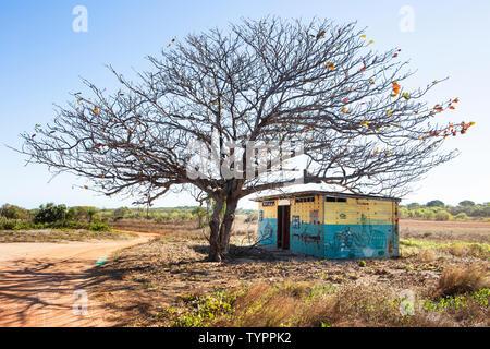 Une cabane en tôle ondulée peinte avec dessins autochtones est debout sous un arbre au milieu d'un champ essayer Banque D'Images