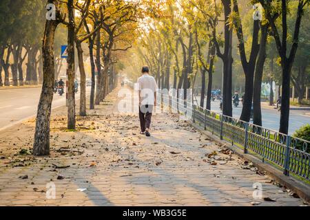 Un homme âgé est marche à travers trottoir entre les arbres en début de matinée sur Hanoi street Banque D'Images