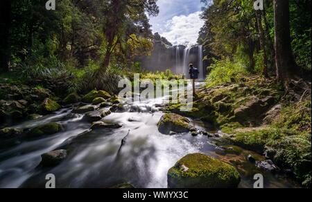 Jeune homme debout devant une cascade, cascade de Whangarei, rivière Hatea, Whangarei Falls Scenic Reserve, Northland, North Island, New Zealand Banque D'Images