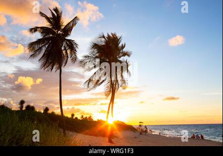 Douce lumière du coucher du soleil le long de l'Océan Atlantique sur une plage à Cuba Banque D'Images